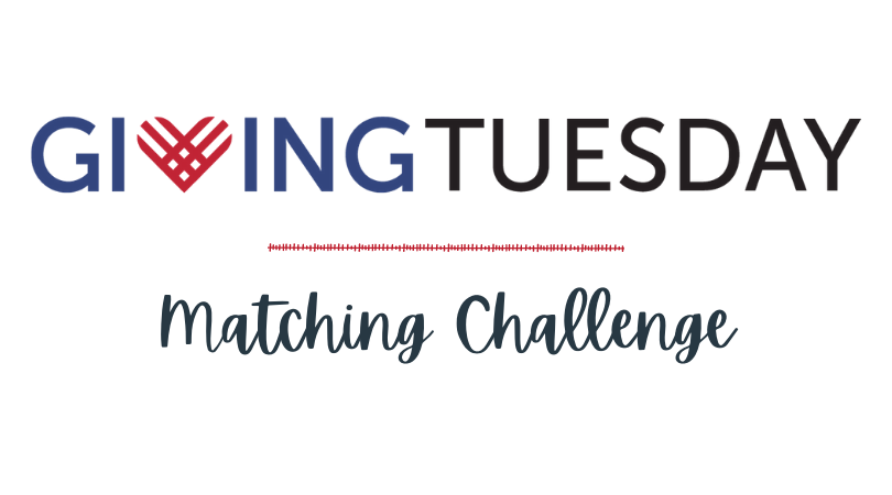 Giving Tuesday Matching Challenge Launched for Four Nonprofits